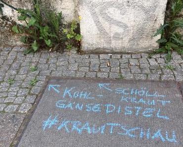 Krautschau: Rebellenbotaniker machen Street Art mit Wildpflanzen