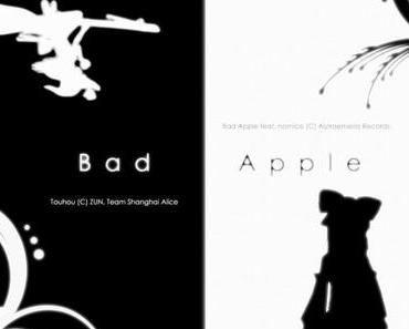 Der Ultimative Touhou Bildschimschoner! Bad Apple!!