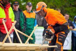 10. Deutsche Waldarbeitsmeisterschaft: STIHL Fahrer holen überragend Gold