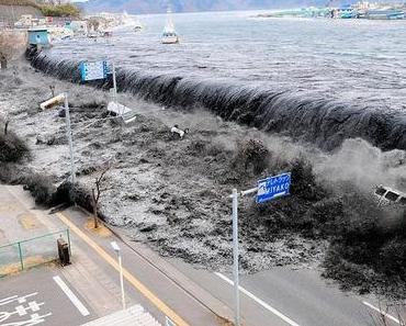 """""""Wenn man Fukushima meidet, besteht keine Gefahr."""""""