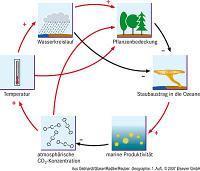 Die Zuwendung der Sozialwissenschaften zum Materiellen gegen Ende des Anthropozäns