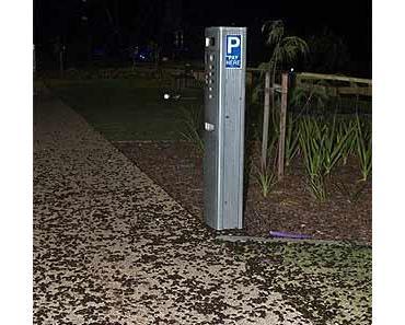Unerklärbare Käferplage in Australien