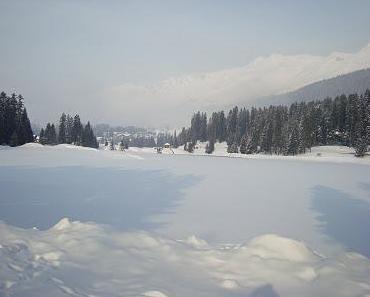 Winterimpressionen- Achtung frostig!