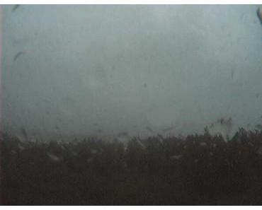 Hurrikan IGOR kommt: Live Webcams auf den Bermudas und Satellitenbild Live Stream