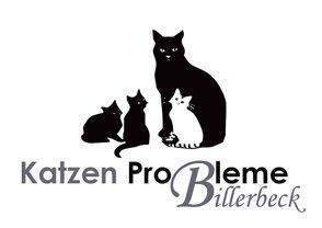 Diesmal gingen die Einnahmen aus unserer Werbeaktion an Angeles Katzenhilfe