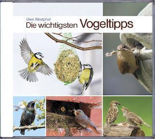 Neu bei Edition AMPLE: Die wichtigsten Vogeltipps
