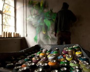 Frisch im Netz: Die Dokumentation zur IBUg 2011