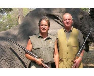 Vale, perfecto, er ist vom Elefanten gefallen – und jetzt zurück zum Thema!