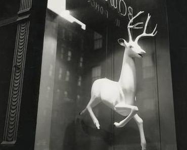 Hamburg: New York Photography 1890-1950