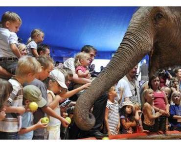 Elefanten Matinée: Berühren und füttern erlaubt!