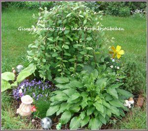 Blumen-Garten Parade Aufgabe 7 ;-)