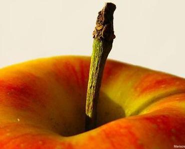 Jetzt ist Apfelzeit!