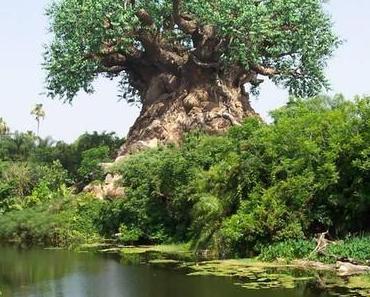 Baum des Lebens?
