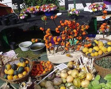 Kürbismarkt in Rärin