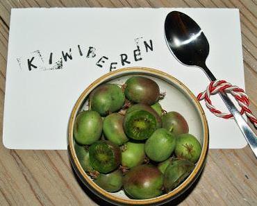 """was für eine exotische Frucht- """"Kiwi Beeren"""""""