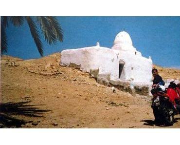 Tunesien: eine ganz süsse Zuckerschnecke
