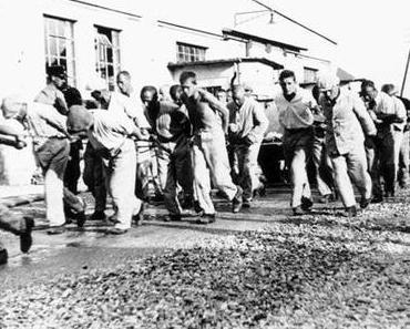 3Sat: Wie Menschen den II. Weltkrieg durchlitten