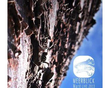 """""""Everything is so confusing"""", Meerblick Podcast 006: Maré Liveset"""