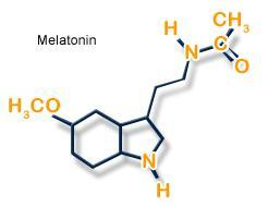 Melatonin bei primärer Insomnie