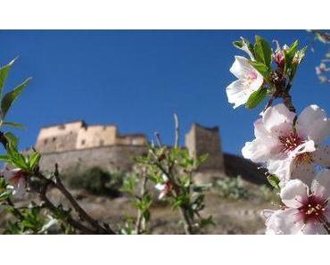 Marokko: Mandelblüten und stotzige Berge