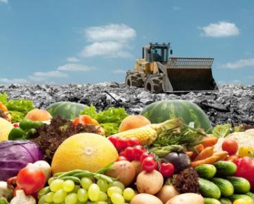 Europäer werfen im Jahr 90 Millionen Tonnen Essen auf den Müll!