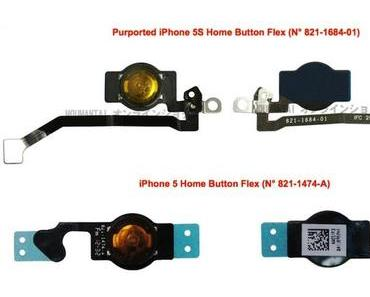[Fotos] iPhone 5S Bauteile(?): Home-Button, Vibrationsmotor