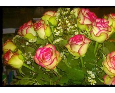 Wunderschöne Rosen... :)