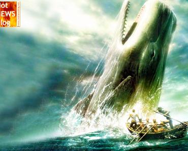 Ist Moby Dick eine wahre Geschichte?