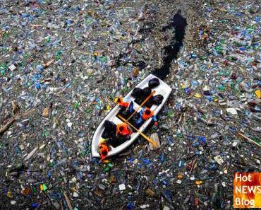 Gewaltige Insel aus Müll im Meer