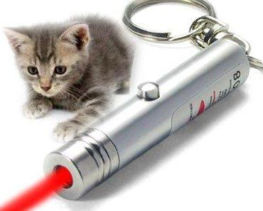 Gefährlich oder großer Spaß? Laserpointer als Katzenspielzeug