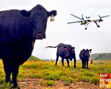 Drohnen für die Landwirtschaft