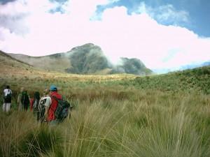 5 Dinge, die man in Ecuador machen sollte