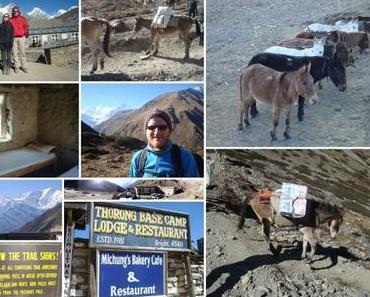 Annapurna Round 2010 – Teil 10