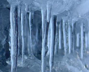Erkälten wir uns durch Kälte?