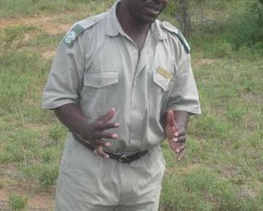 Reisebericht Südafrika: Der Ruf der Wildnis, Teil 3: Tiergeschichten