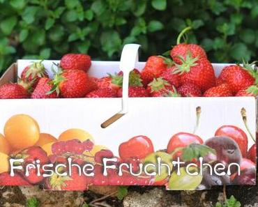 Erdbeer-Joghurt-Stracciatella-Eis