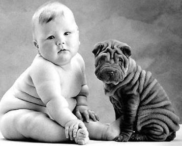 Kinderlebensmittel oft zu süss und fettig