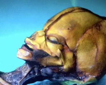 Atacama-Mumie