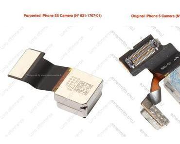 iPhone 5S Kamera-Modul mit seperatem Dual-LED Blitz