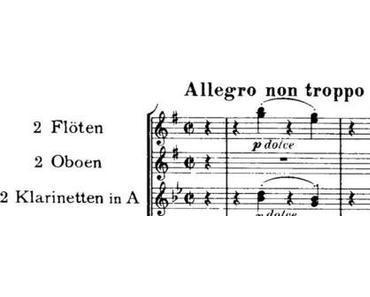7. Mai 1833: Johannes Brahms (*)