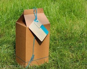 FAIRY BOX | Alternative zu Glossybox, Pink Box und Co.