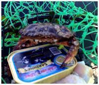 Crabbing in Washington