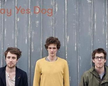 Say Yes Dog – the Next Big Thing ?