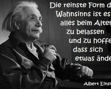 Systematischer Irrsinn! Bundestagswahl 2013