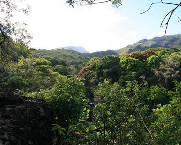 Maui und die Schönheit des Augenblicks