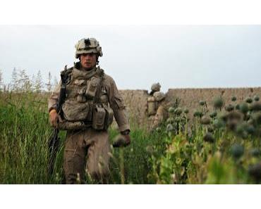 Alles nur Zufall?: Erneut Opium-Rekordernte in Afghanistan