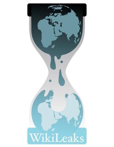 Amerikanischer Abgeordneter sagt Wikileaks begehe keine Verbrechen