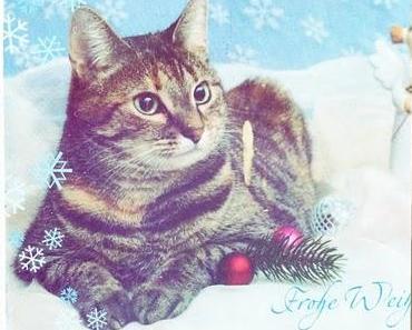 Liebe Weihnachtspost erhalten