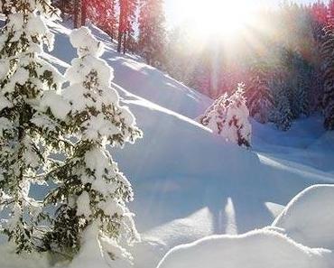 Frohe Weihnachten allen Mariazellerland Blog Lesern