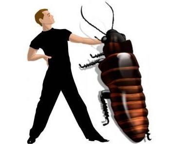 Marco Angelini und der Cucaracha